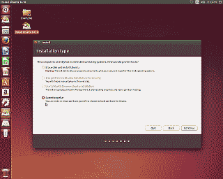 Screenshot of the Ubuntu installation type screen