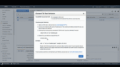 Screenshot showing the public IP address assigned to this FreeBSD instance n Amazon EC2