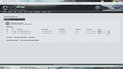 Screenshot showing the Disk Management page in NAS4Free indicating that two new disks have been added